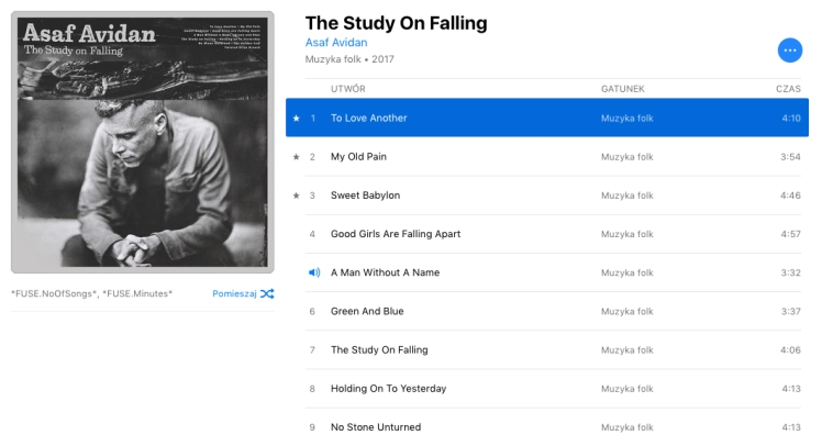 Asaf Avidan: The study on falling.jpg