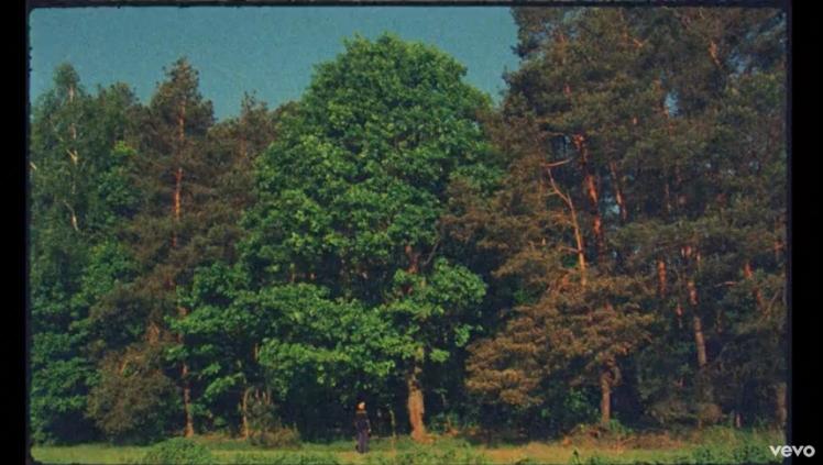 Kadr z teledysku Małomiasteczkowy: Dawid Podsiadło.jpg